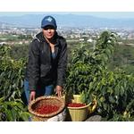 Kostaryka Alice Soto