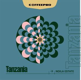 Tanzania Ngila Estate