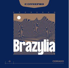 Espresso Brazylia Cerrado