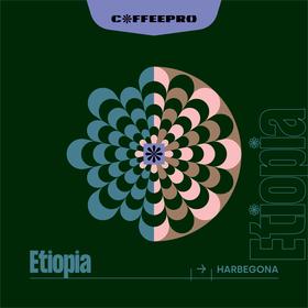 Etiopia Harbegona