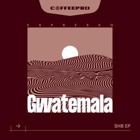 Espresso Gwatemala SHB EP